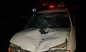 В Донецкой области легковушка насмерть сбила женщину
