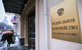 Зачем валютные операции госучреждений передают в Казначейство