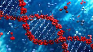 Ученые обнаружили «гены риска», которые толкают людей на необдуманные поступки