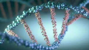 Ученые назвали возможную причину заболевания смертельными болезнями