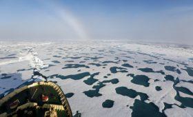 Правительство определится с льготами для нефтяников в Арктике