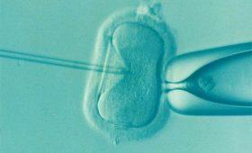 Ученые нашли связь между риском рака простаты и искусственным оплодотворением