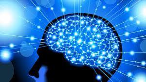 Ученые: не стоит тратить деньги на добавки для улучшения работы мозга