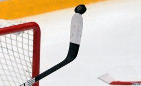 Сезон НХЛпланируют возобновить виюле