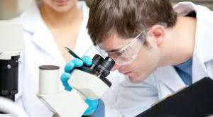 Ученые создали микрофильтр для раковых клеток