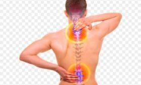 Врачи нашли неожиданную причину болей в спине