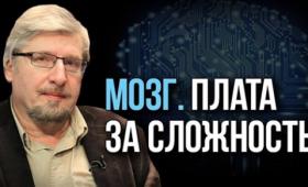 Профессор Сергей Савельев развенчивает мифы об одарённых с рождения детях