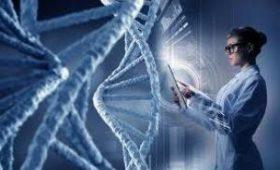 Медики выяснили, как гены влияют на развитие аутизма