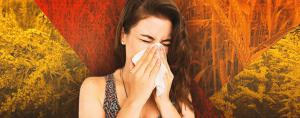 5 фактов, которые следует знать об аллергии