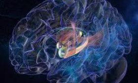 Японские ученые разработали световой имплантат для борьбы с раком