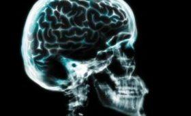 Ученые сделали невероятное открытие о человеческом мозге