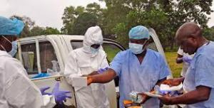 В Африке начали закрытие границ из-за смертельного вируса