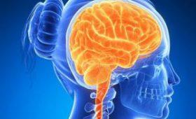 Самостоятельная настройка активности мозга в альфа-диапазоне улучшила внимание