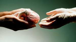 В США впервые пересадили сердце умершего человека